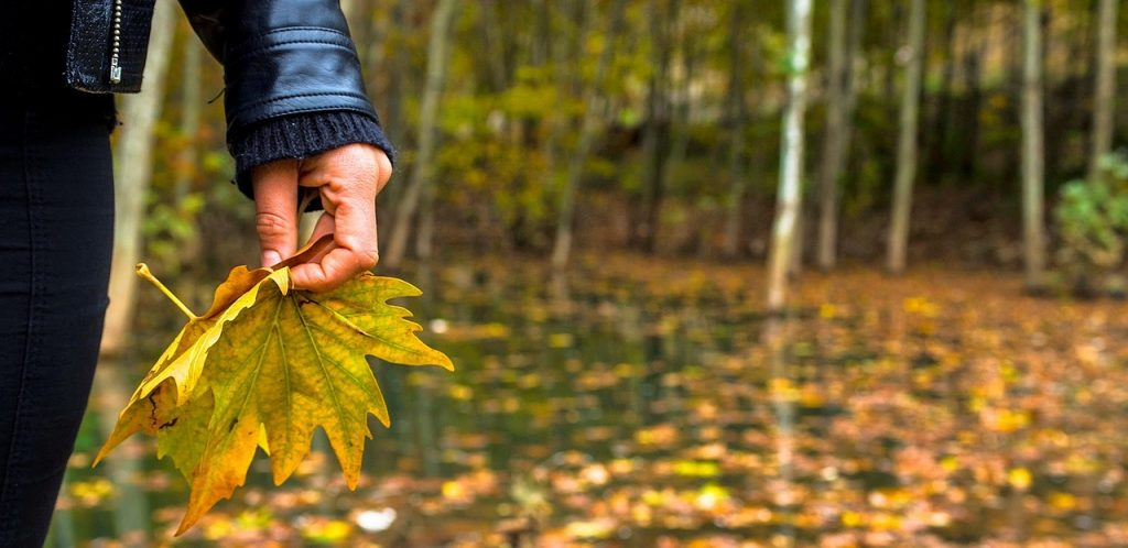 Remember, Remember: 10 Reasons Why I Love Autumn