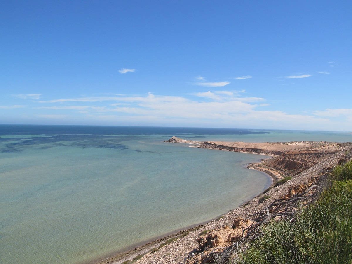 Eagle-Bluff-viewpoint-Western-Australia-Shark-Bay