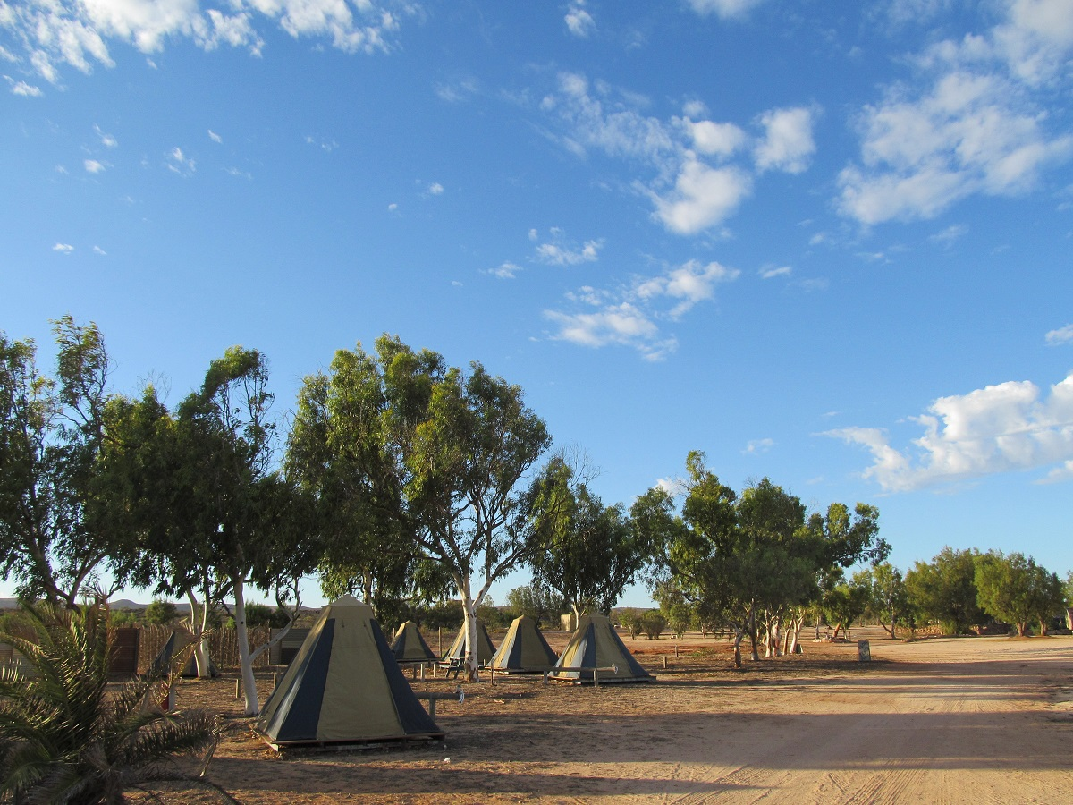 Yardie-homestead-campsite-campground-tents-camping-Western-Australia